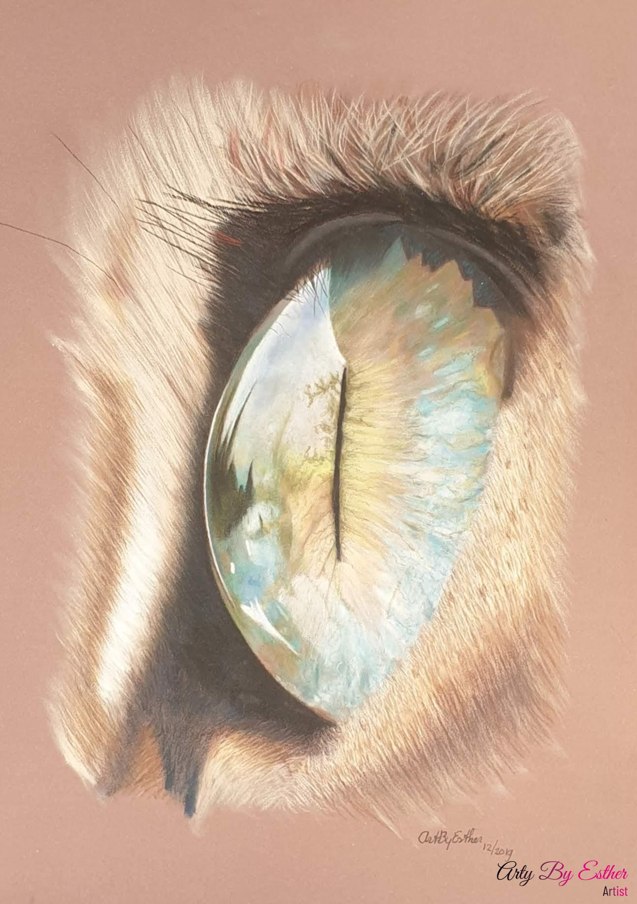 Cat's eye pastelpainting