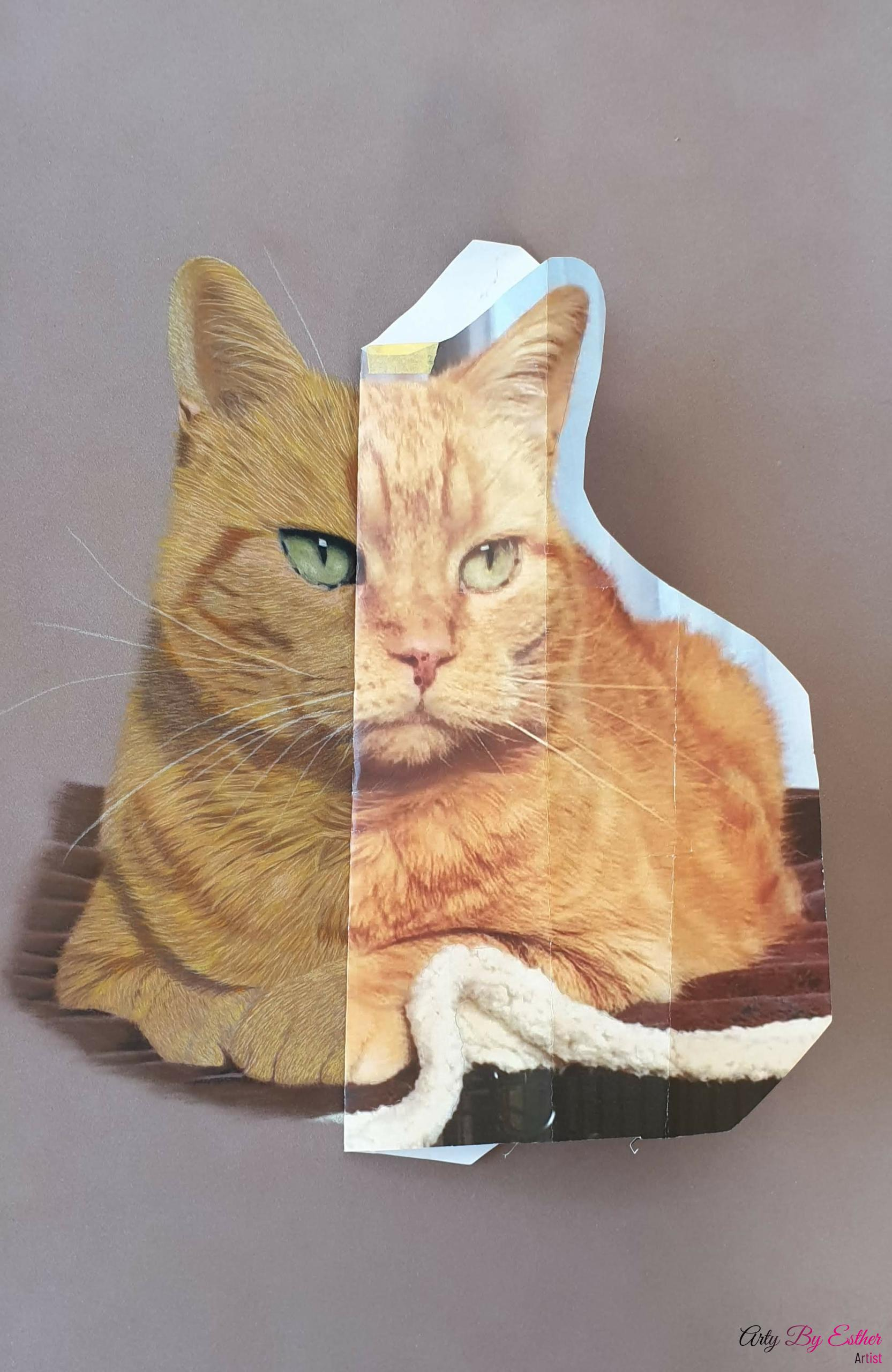 Billy pastelpainting cat
