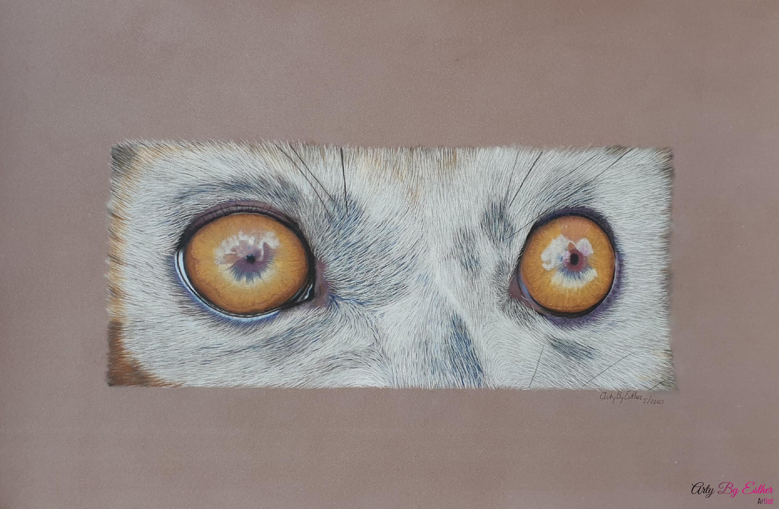 ring tailed lemur pastelpainting