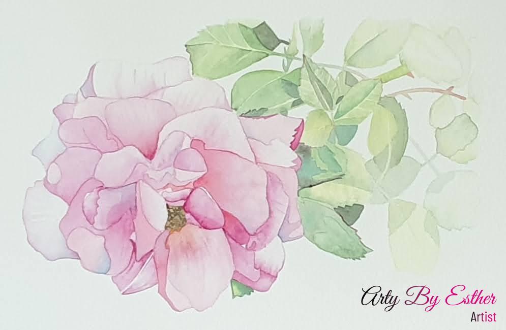 Louises rose pink