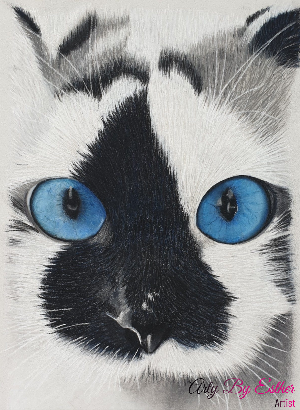 Mister blueeyes Pastelpainting cat