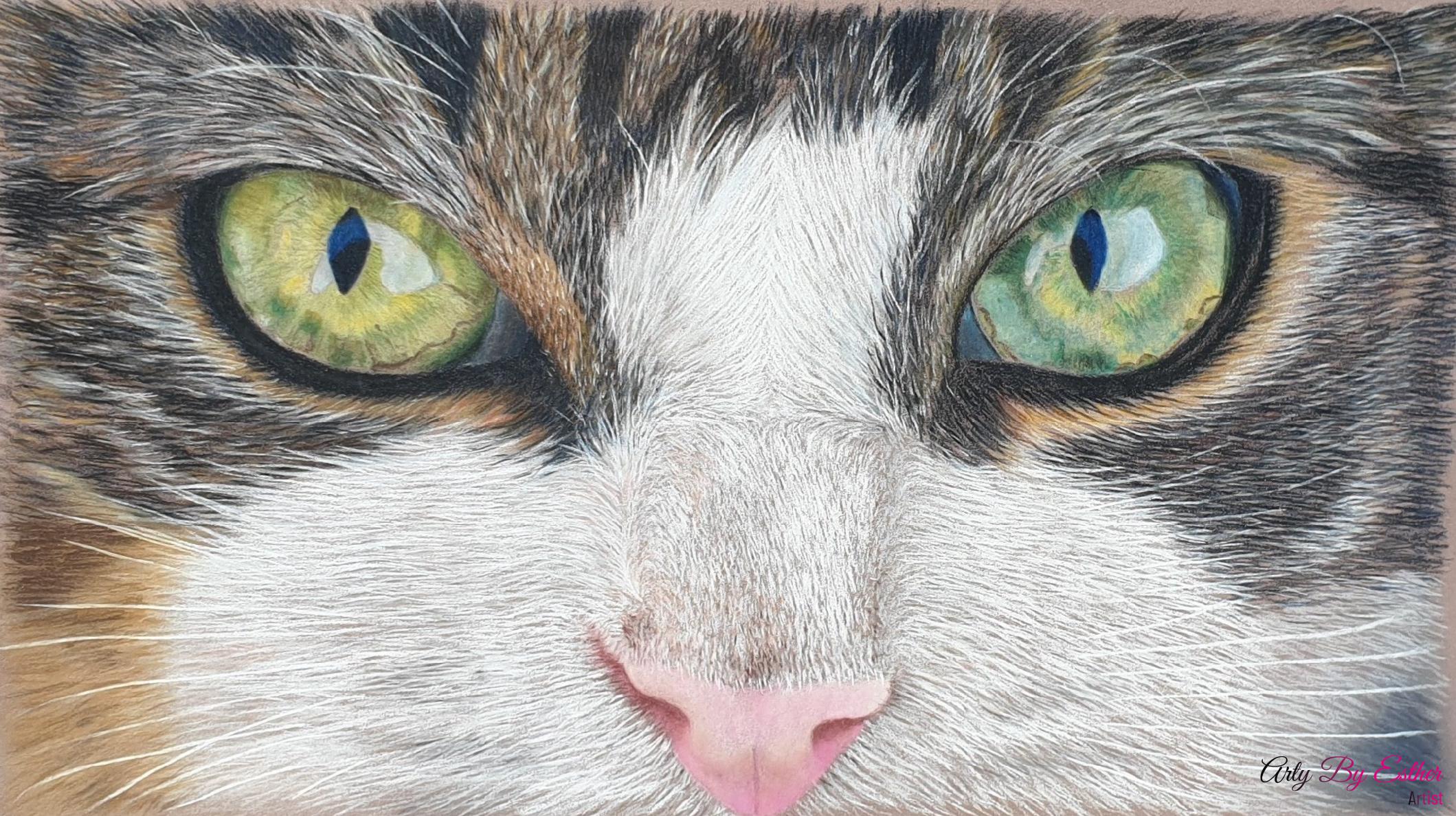 Caspertje pastelpainting Cat