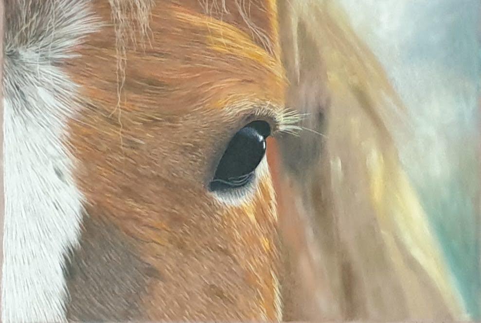 Affra pastelpainting horse
