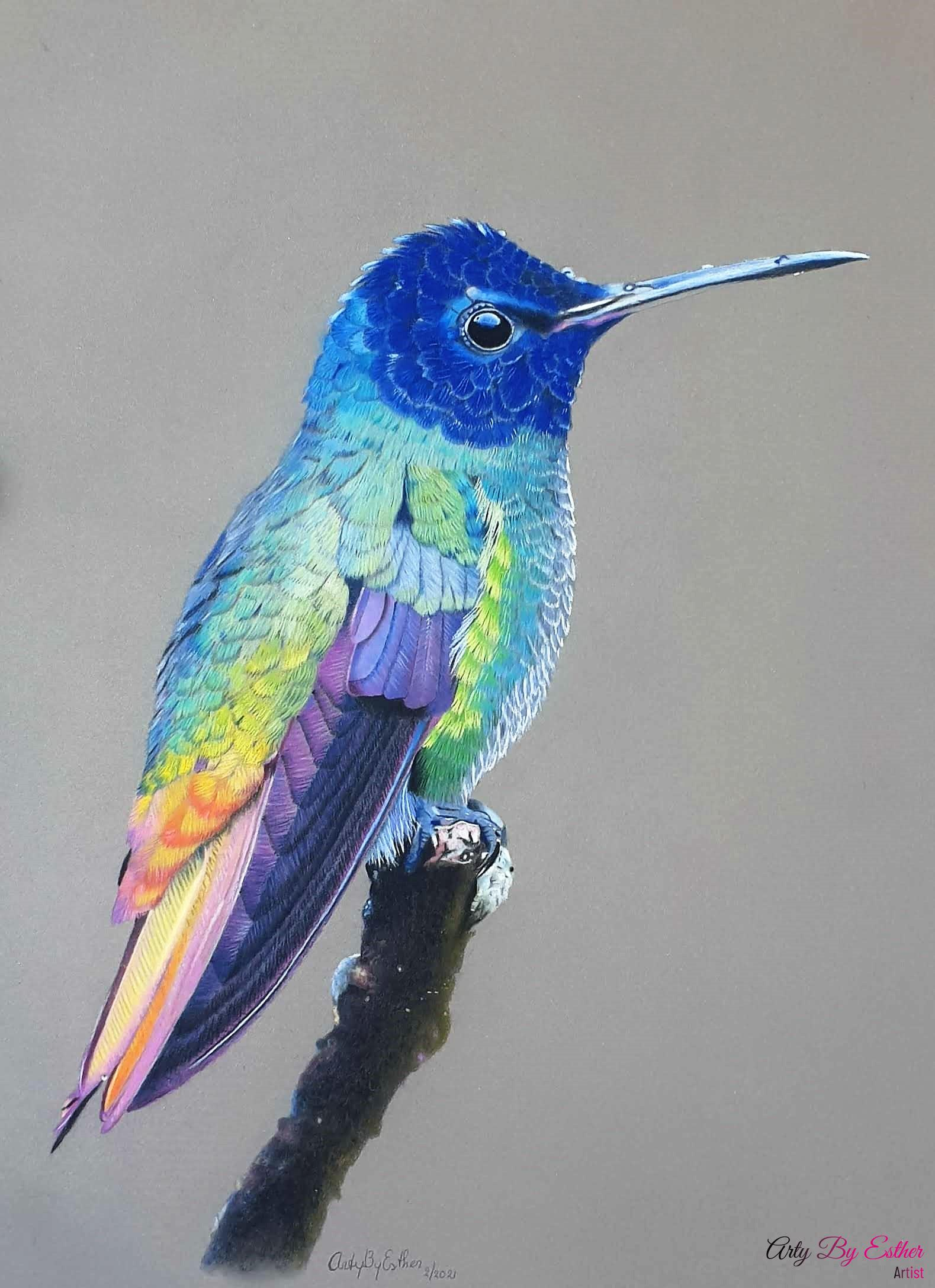 Hummingbird made by Arty By Esther pastelpainting